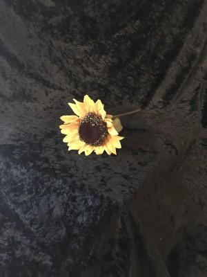 Flower-018 .50